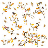 Autumn Design Elements ornemental Images stock