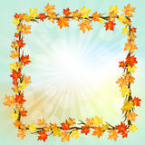 Autumn  design Stock Photography