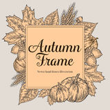 Autumn design for greeting card. Vintage harvest festival autumn elements. Hand drawn vector doodle frame with leaves, acorn, clov Stock Image