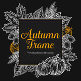Autumn design for greeting card. Vintage harvest festival autumn elements. Hand drawn vector doodle frame with leaves, acorn, clov. Es, pumpkins and spica wheat Royalty Free Stock Images