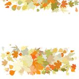 Autumn design with leafs. EPS 8 Stock Images