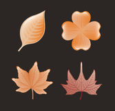 Autumn design Stock Image