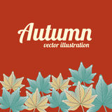 Autumn design Royalty Free Stock Photos