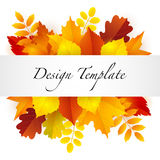 Autumn design template Royalty Free Stock Photography