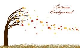 Autumn  design Royalty Free Stock Photos