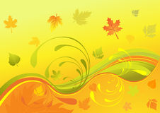 Autumn design, vector illustration Royalty Free Stock Photos