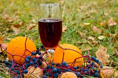 Autumn dessert. Wine and a fruits Royalty Free Stock Photography