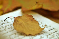 Autumn Diary Stock Images