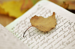 Autumn Diary Royalty Free Stock Images