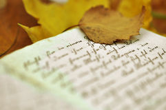 Autumn Diary Royalty Free Stock Photo