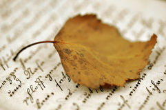 Autumn Diary Stock Photo