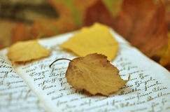 Autumn Diary Stock Photos