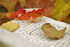 Autumn Diary Royalty Free Stock Photography