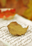 Autumn Diary Royalty Free Stock Image