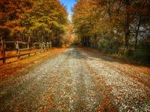 Autumn Dirtroad Stock Afbeeldingen