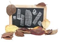 Autumn discount Royalty Free Stock Photos