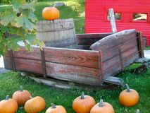 Autumn Display. A bunch of pumpkins and and an old antique maple sugaring sleigh make a beautiful and unique autumn display Stock Photography
