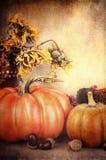 Autumn Display bonito Imágenes de archivo libres de regalías