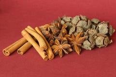 Autumn display of dried seeds Stock Photos