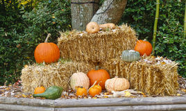 Autumn Display of Straw and Pumpkins Royalty Free Stock Photos