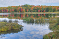 Autumn Doe Lake Stock Photography