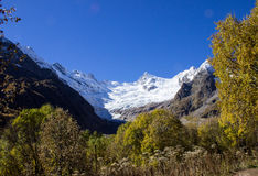 Autumn Dombai, mountains, nature, snow,wood Royalty Free Stock Images