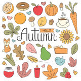 Autumn Doodles. A collection of Autumn / Fall illustrations in a doodle style Royalty Free Stock Photography