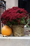 Autumn Doorstep Stock Photos