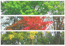 Autumn dots banners Royalty Free Stock Photos