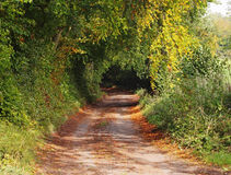 Autumn down an English rural Lane Stock Photo
