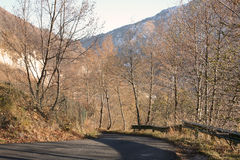 Autumn. Downhill road with autumn colors Stock Photography