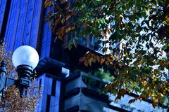 Autumn Downtown Royaltyfri Foto