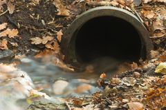 Autumn drain Stock Photo