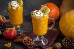 Autumn Drink para a ação de graças Imagem de Stock