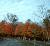 Autumn Drive--1 Royalty Free Stock Photography