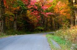 Autumn drive Stock Photo