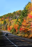 Autumn Drive Stock Images