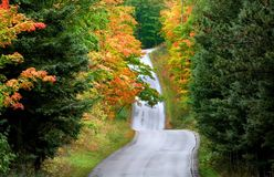 Autumn Drive Royalty Free Stock Photography
