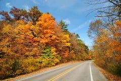 Autumn Drive Royalty-vrije Stock Afbeeldingen