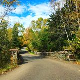 Autumn Drive Immagine Stock Libera da Diritti