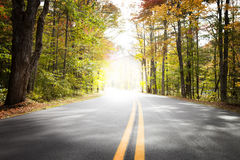 Autumn Drive, Light Tunnel. A view down a newly paved country road in autumn with a bright light in the horizon Royalty Free Stock Photos