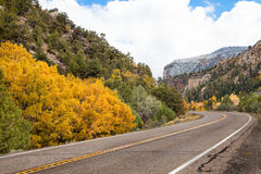 Autumn Drive Stock Image