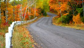 Autumn Drive Way Royalty Free Stock Image