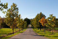 Autumn driveway Royalty Free Stock Photography