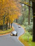 Autumn Driving. Driving through the autumn trees Stock Photography