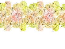 Autumn Dry Golden Leaves - Seamless Border isolated Royalty Free Stock Photos