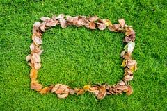 Autumn Dry Leaf como marco Imágenes de archivo libres de regalías
