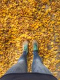 Girl Legs and dry leaf. Dry leaf on ground. Autumn. Winter is coming Royalty Free Stock Photo