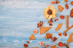 Autumn dry yellow and red flowers on a blue wooden background. Texture, background Place for text Top view. Autumn dry yellow and red flowers on a blue wooden stock images