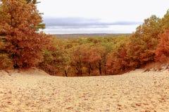 Autumn Dune Vista Royalty-vrije Stock Afbeeldingen